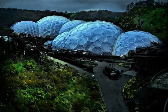 Eden Project by Richard Hamilton-Veal