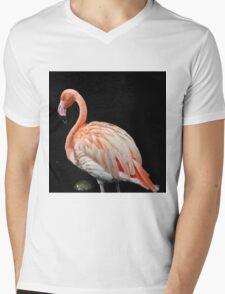 Flamingo 3 Mens V-Neck T-Shirt