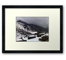 Nature's challenge Framed Print