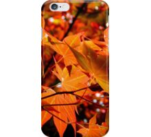 My Front Yard Tree   ^ iPhone Case/Skin