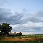 Boon's Farm by SteveDubois