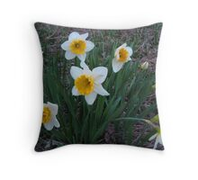 Daffodils At Dusk Throw Pillow