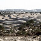 Sand dunes. by debjyotinayak
