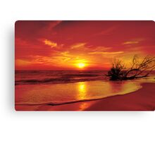 Evening in colour Canvas Print