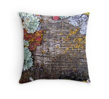 Lichen Playground Throw Pillow