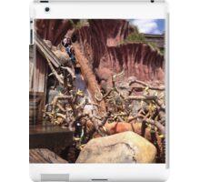 Splash mountain iPad Case/Skin