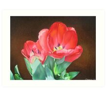 Tulips - Red Silk Art Print