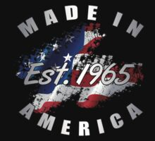 1965 Made In America by thepixelgarden