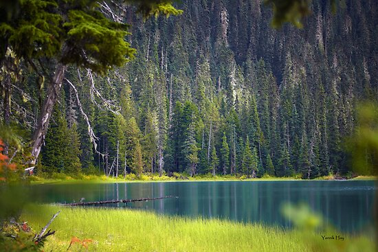 Lower Joffre Lake, Joffre Lake Provincial Park, British Columbia, Canada  by Yannik Hay