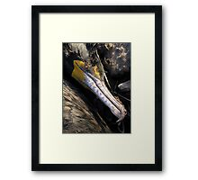 Death Comes To the Innocent Framed Print