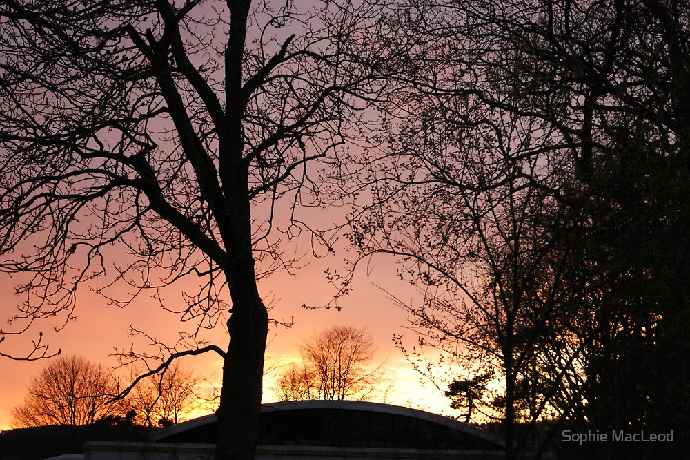 Sunset over Kingsmeadows - Peebles by Sophie MacLeod