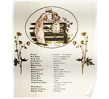 Language of Flowers Kate Greenaway 1884 0047 Descriptions of Specific Flower Significations Poster