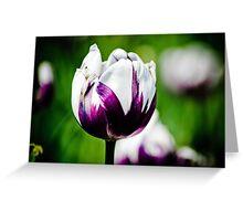Tulip 1 Greeting Card