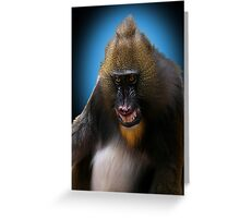 Smile for the Camera Greeting Card