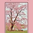 Happy Mother's Day - Meet Me Under The Pink Blooms Beside The Pond 1 by AngieM