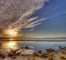 Morning Sun  by Joel Aston