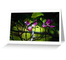 pink, dogwood Greeting Card