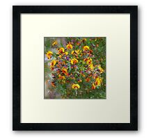 PhotoImpression :: Bacon &Eggs Framed Print