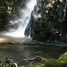 Canopy filtered light on a waterfall by middleofaplace