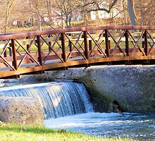 Highland Park Footbridge by Marie Sharp