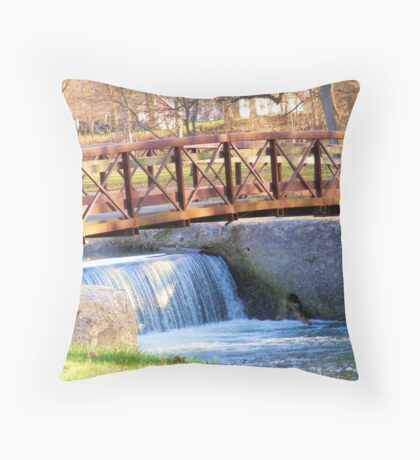Highland Park Footbridge Throw Pillow