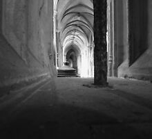 Vaulted view by Ecohippy