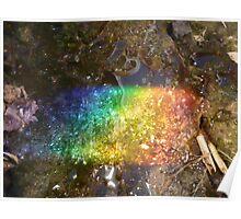Rainbow trash Poster