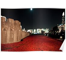 Poppies at the Tower of London - At Night with the Shard. Poster