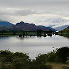 Morning on Lake Wanaka by middleofaplace