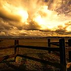 Pickering's Pasture, Mersey estuary, UK by Spadgie