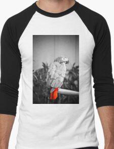 African Grey  Men's Baseball ¾ T-Shirt