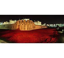 Poppies at the Tower of London -  Night Panorama Photographic Print