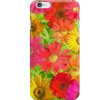 Gerber Daisy iPhone Case/Skin