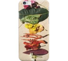 Pride! Tropical Arrangement iPhone Case/Skin