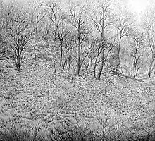 Hillside by JETIII