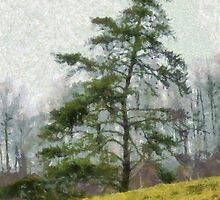 Lonely Pine by Jean Gregory  Evans