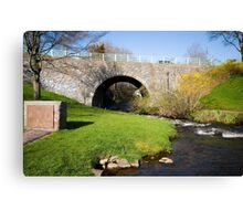 River Herring in Plymouth, MA Canvas Print