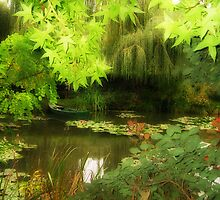 Through the Leaves by Christine Wilson
