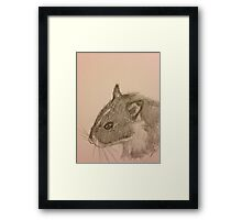Hamster Drawing Framed Print