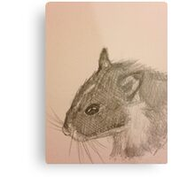 Hamster Drawing Metal Print