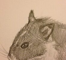 Hamster Drawing by chanicecollette