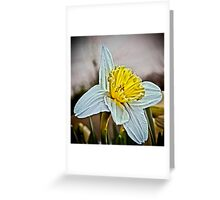 Reaching for the Sun... Greeting Card