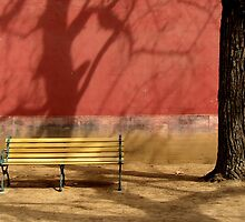 Solitude by Deanna Roberts Think in Pictures