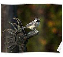 Bird on Sculpture Poster