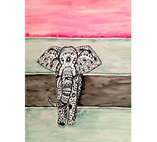 Elephant Tribal Zentangle Photographic Print