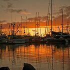 Fishing Fleet Sunset by lizalady