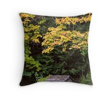 Little Red Shack in Mountains in Autumn Throw Pillow