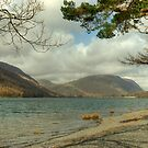 Buttermere Shoreline by Jamie  Green