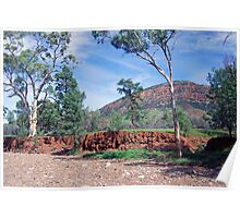 Creekbed, Aroona Valley, Flinders Ranges, South Australia Poster