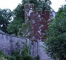 Bodnant Castle in bloom by bellababe